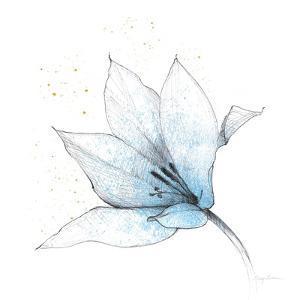Blue Graphite Flower IX by Avery Tillmon