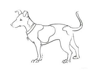 Ink Dog IV by Avery Tillmon