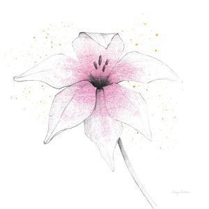 Pink Graphite Flower V by Avery Tillmon