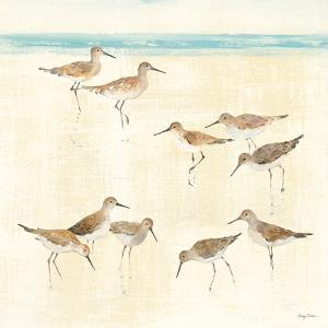 Sandpipers by Avery Tillmon