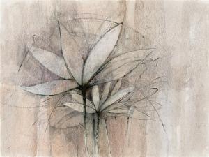Windflowers by Avery Tillmon