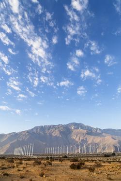 California, USA: A Huge Onshore Wind Farm Near Palm Springs / Desert Hot Springs by Axel Brunst