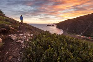 Santa Cruz, Channel Islands NP, CA, USA: Male Hiker On The Trail Above The Scorpion Beach, Sunrise by Axel Brunst