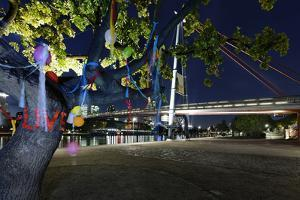 Decorated Tree of a Couple in Love in Front of Holbeinsteg, Footbridge, Frankfurt on the Main by Axel Schmies