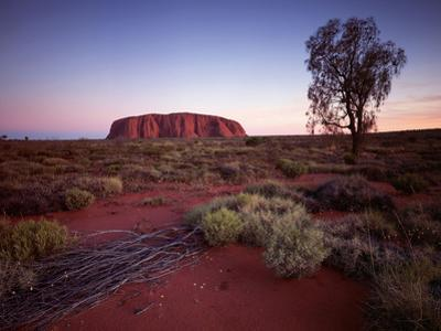 Ayers Rock, Uluru at Sunset