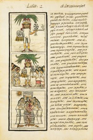 https://imgc.allpostersimages.com/img/posters/aztec-chronicles-priests_u-L-PMWU340.jpg?p=0