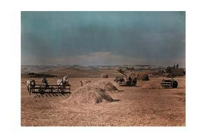 Hay Farmers Use Horses, Tractors and Machines to Gather their Crop by B. Anthony Stewart