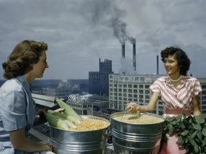 Workers at a Processing Plant Pose with Buckets of Corn and Soybeans by B. Anthony Stewart