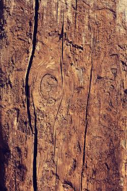 Old Wood Texture for Background by B-D-S