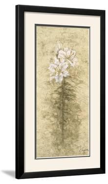 Lily Fair by B. J. Zhang