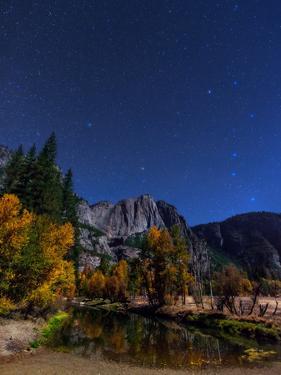 A Moonlit Autumn Night with Polaris, and Constellations Ursa Major and Ursa Minor over Aspen Trees by Babak Tafreshi