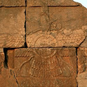 A Relief in Persepolis Depicting Faravahar, the Best-Known Symbol of Zoroastrians by Babak Tafreshi