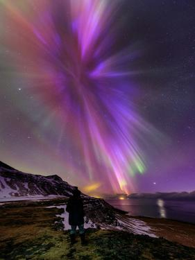 A Woman Enjoys the Aurora Borealis, Bursting in Colorful Rays. Venus Is at the Lower Right by Babak Tafreshi