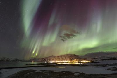 Aurora Borealis, the Northern Lights, Above the Lights of a Seaside Town in Iceland by Babak Tafreshi