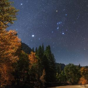 Bright Star Sirius and Constellation Orion over the Merced River in Moonlight, with Aspen Trees by Babak Tafreshi