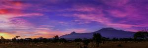 Colorful Clouds at Dawn over Mount Kilimanjaro. the Main Peak Is Kibo; the Smaller Peak Is Mawenzi by Babak Tafreshi