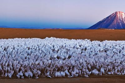 Dawn and Earth's Shadow over Mount Licancabur. a Forest of Ice Penitentes are in the Foreground by Babak Tafreshi