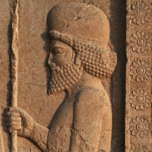 Detail of a Relief in Persepolis, Showing a Mede Soldier by Babak Tafreshi