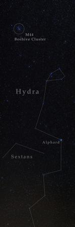 Hydra, with its Only Bright Star, Alphard, and the Beehive Star Cluster, in Cancer by Babak Tafreshi