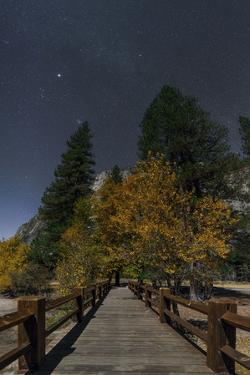 Planet Jupiter, in Constellation Taurus, Above a Footbridge over the Merced River by Babak Tafreshi