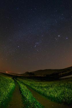 Starry Sky Above Lake Alqueva, a Starlight Reserve Destination and a UNESCO Initiative by Babak Tafreshi