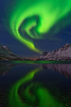 The Aurora Borealis, or Northern Lights, Swirl over a Fjord by Babak Tafreshi