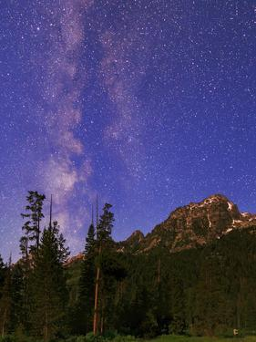 The Milky Way in the Morning Twilight over the Teton Range and Evergreen Forests by Babak Tafreshi