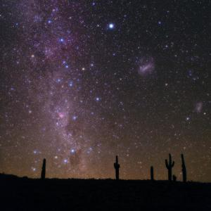 The Southern Sky with Orion, Crux, Sirius, Canopus and Magellanic Clouds over Cacti by Babak Tafreshi