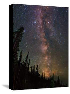 The Summer Milky Way Appears Dazzling over Yellowstone National Park by Babak Tafreshi