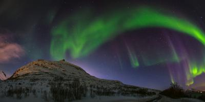 View of the Aurora Borealis, Northern Lights, in Northern Norway by Babak Tafreshi