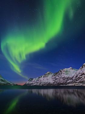 View of the Aurora Borealis, Northern Lights, Reflected in a Fjord in Norway by Babak Tafreshi