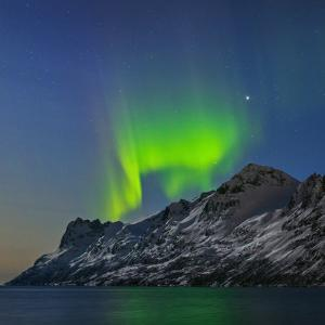 View of the Aurora Borealis, Northern Lights, Reflected in a Fjord by Babak Tafreshi
