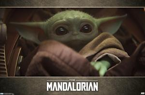Baby Yoda - The Mandalorian (Close up)