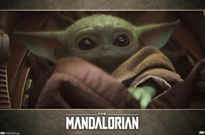 Baby Yoda - The Mandalorian - Grogu (Close up)