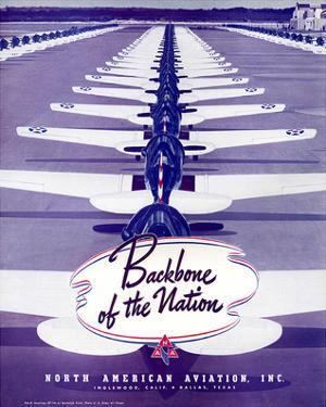 Backbone of the Nation NAA