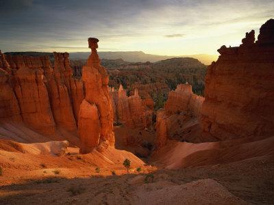 https://imgc.allpostersimages.com/img/posters/backlit-hoodoos-and-thor-s-hammer-bryce-canyon-national-park-utah-usa_u-L-P7NHC00.jpg?p=0