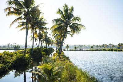 https://imgc.allpostersimages.com/img/posters/backwaters-near-north-paravoor-kerala-india-south-asia_u-L-Q12SD380.jpg?p=0