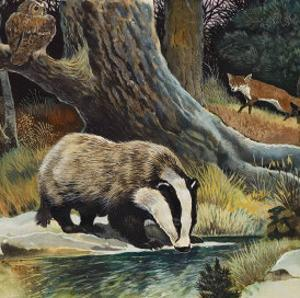 Badger, Fox, Owl and Mouse