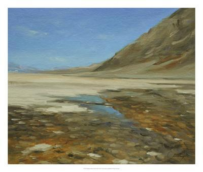 https://imgc.allpostersimages.com/img/posters/badwater-basin-death-valley_u-L-F8FAG30.jpg?p=0