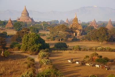 https://imgc.allpostersimages.com/img/posters/bagan-pagan-myanmar-burma-asia_u-L-PNGOC90.jpg?p=0