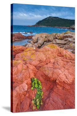 Baie de Rondinara Bay, Street of Bonifacio, Corsica, France