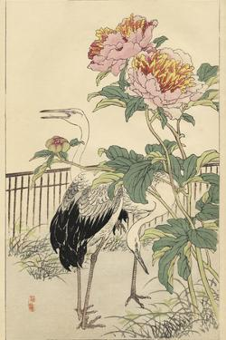 Crane and Peony by Bairei