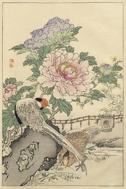 Pheasant and Peony by Bairei