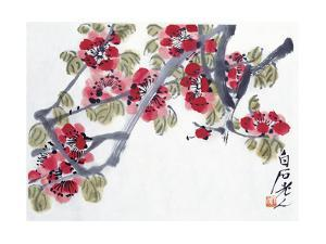 Apricot Blossoms by Baishi Qi