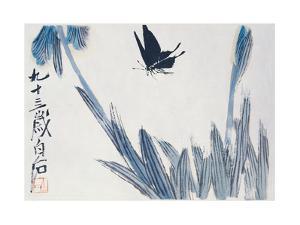 Dancing Butterfly by Baishi Qi