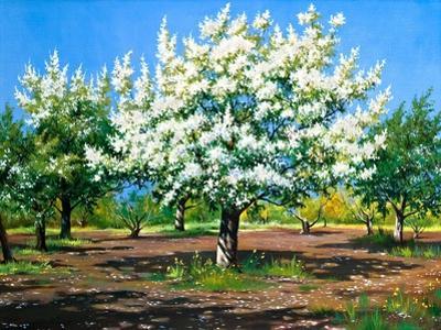 Blossoming, Spring Garden by balaikin2009
