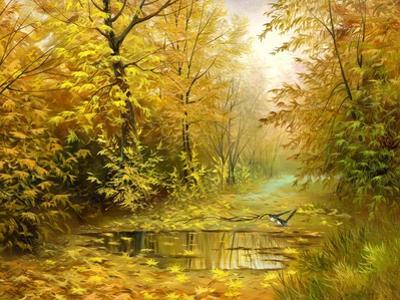 Pool On Road To Autumn Wood by balaikin2009