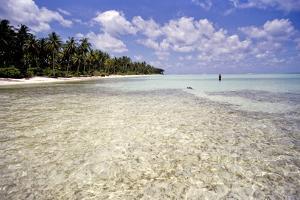Clear Water Off Bangaram Island, Lakshadweep Islands, India, Indian Ocean, Asia by Balan Madhavan