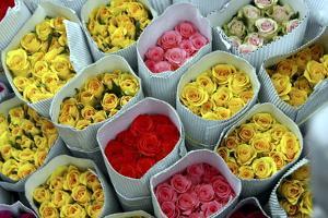 Flowers for Sale, Delhi, India, Asia by Balan Madhavan