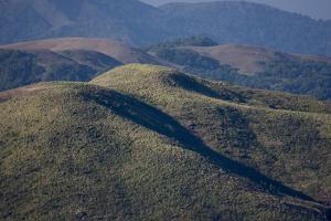 Grasslands, Mangala Devi Peak, Periyar, Kerala, India, Asia by Balan Madhavan